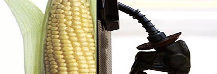 Ethanol- Solution or Problem?